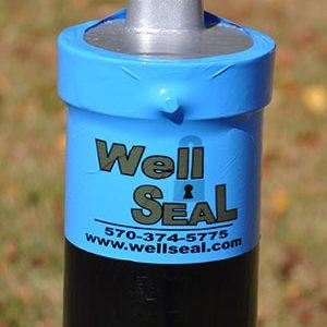 Well Seals